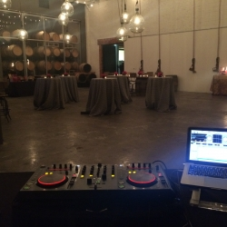 DJ at winery sf